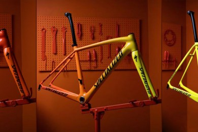 specialized-torch-hero