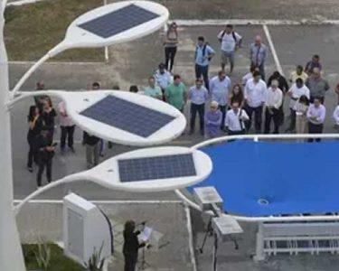 arvore-solar-hero