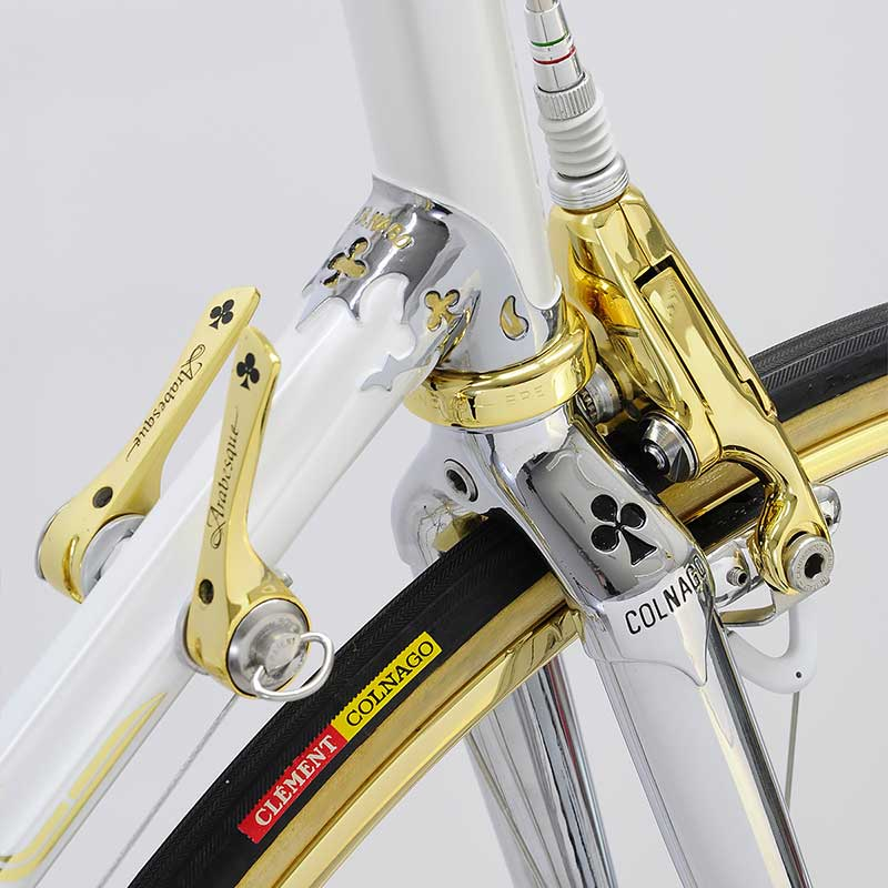 gold-colnago-arabesque-04