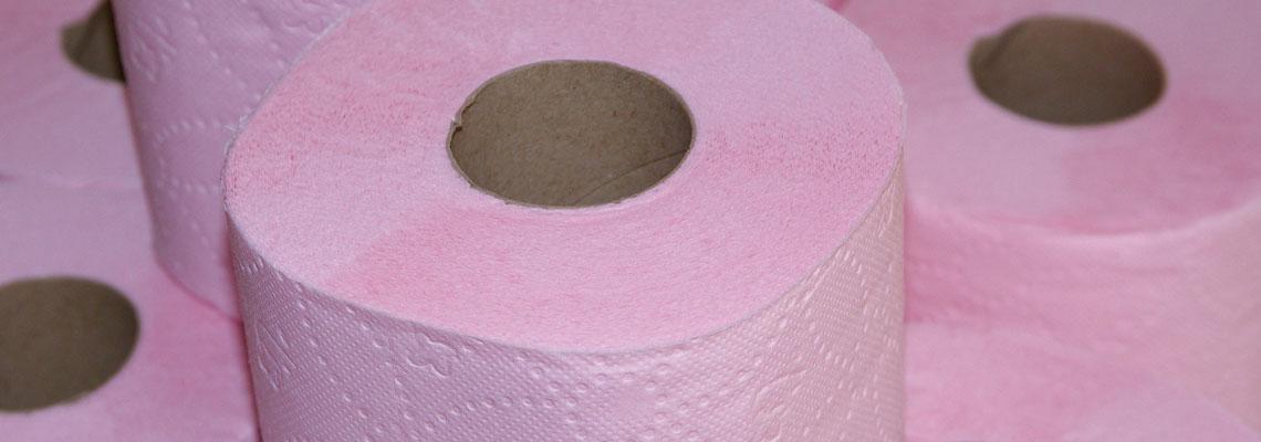 Acredite se quiser: na Holanda, até papel higiênico vira ciclofaixa