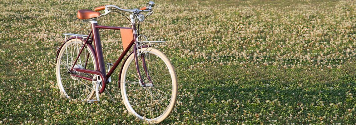 Vela bikes: design e conforto com tecnologia de ponta
