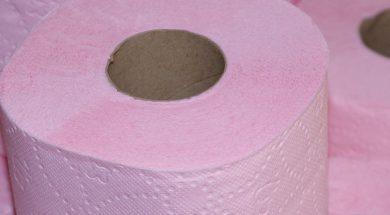 Na Holanda, até papel higiênico vira ciclofaixa